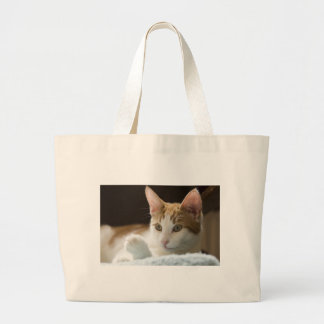 beautiful ginger and white cat large tote bag