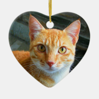 Beautiful Ginger Cat Christmas Ornament