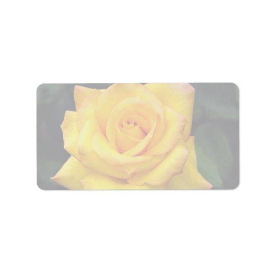 Beautiful Gold medal Grandiflora Rose, 'Aroyqueli' Address Label