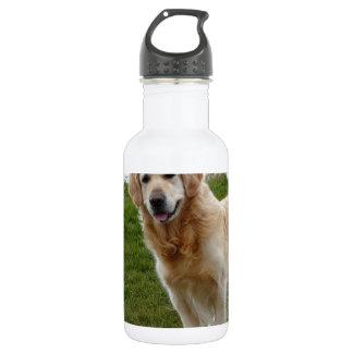 Beautiful Golden Retriever Dog Standing 532 Ml Water Bottle