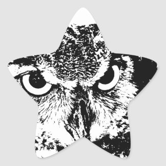 Beautiful Great Horned Owl Black & White Graphic Star Sticker