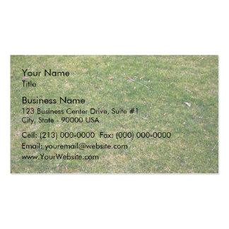 Beautiful Green Grass Background Business Cards
