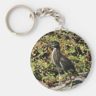 Beautiful Green Heron Key Chains