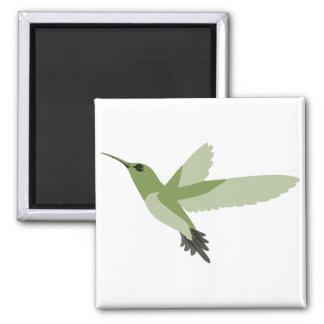 Beautiful Green Hummingbird Square Magnet