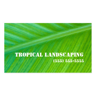Beautiful Green Leaf Macro Landscaping Business Pack Of Standard Business Cards