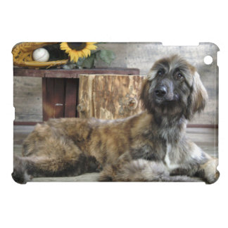 Beautiful Grey Afghan Hound Dog iPad Mini Case