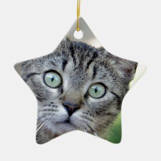 Beautiful Grey Kitten with stunning eyes Christmas Ornament