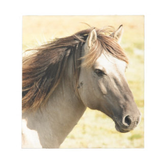 Beautiful grey wild horse notepad