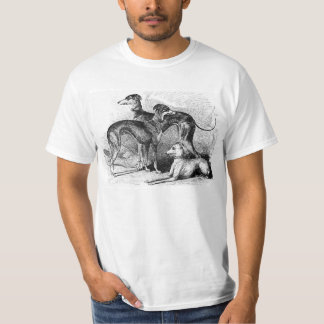 Beautiful Greyhounds T-Shirt