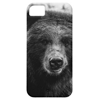 Beautiful Grizzly Bear Photo iPhone 5 Case