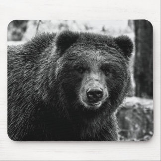 Beautiful Grizzly Bear Photo Mousepads