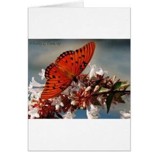 Beautiful Gulf Fritillary Butterfly Card