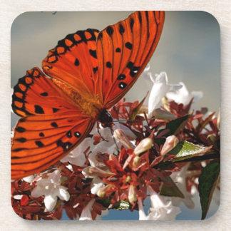 Beautiful Gulf Fritillary Butterfly Coasters