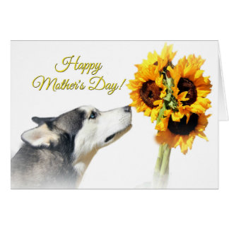 Beautiful Happy Mother's Day Husky and Sunflower Card