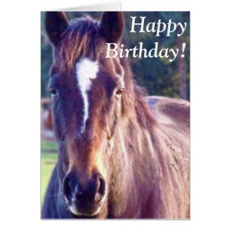 Beautiful Horse Birthday Card