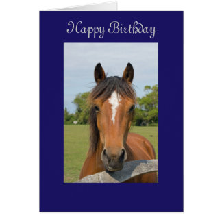 Beautiful horse happy birthday greetings card
