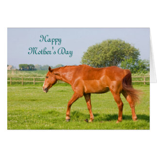 Beautiful horse happy mother's day card