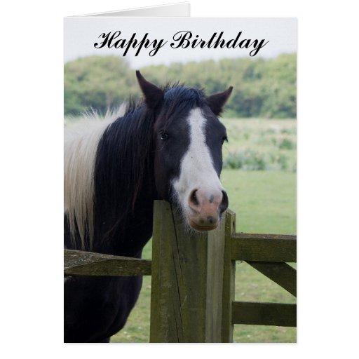 Beautiful Horse head birthday greeting card