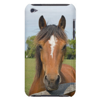 Beautiful horse head ipod touch 4G case, gift idea iPod Touch Case
