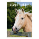 Beautiful horse head palamino happy birthday card