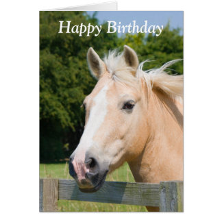 Beautiful horse head palamino happy birthday card