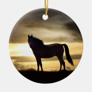 Beautiful Horse in the Sunlight Ornament