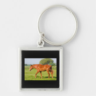 Beautiful horse keychain, gift idea Silver-Colored square key ring