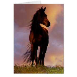 Beautiful Horse Lover Birthday Card