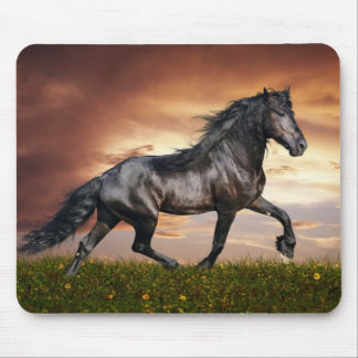 Beautiful Horse Mouse Mat