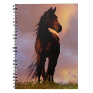 Beautiful Horse Notebook