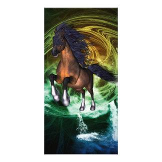 Beautiful horse photo card