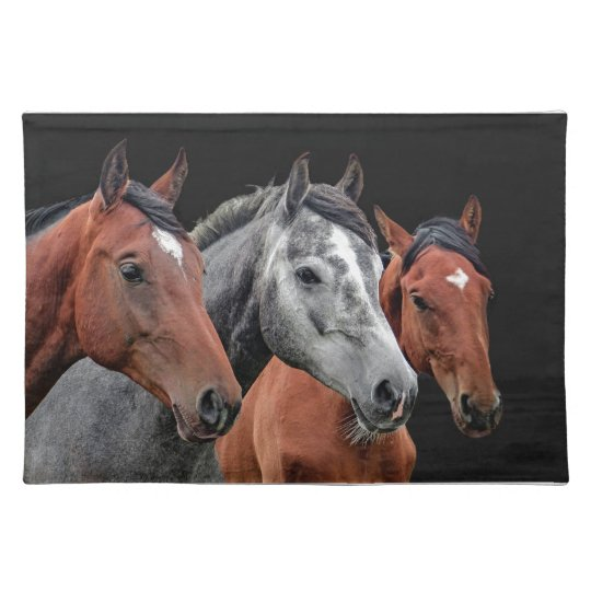 BEAUTIFUL HORSE PORTRAIT, MAT FOR HORSE LOVERS PLACE MAT