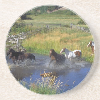 Beautiful Horse Ranch Destiny Nature Drink Coaster