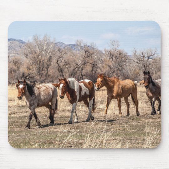 Beautiful Horses in a Pasture Mouse Mat