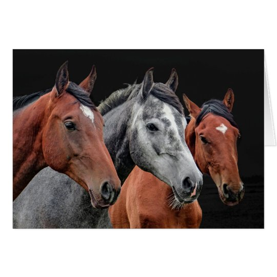 BEAUTIFUL HORSES PORTRAIT. HORSE FACE CLOSEUP CARD