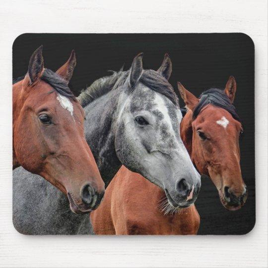 BEAUTIFUL HORSES PORTRAIT. HORSE FACE CLOSEUP MOUSE PAD