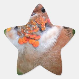 Beautiful Hummingbird Star Sticker
