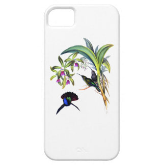 Beautiful Hummingbirds and Purple Orchids iPhone 5 Covers