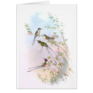 BEAUTIFUL HUMMINGBIRDS CARD