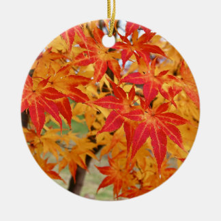beautiful japanese maple tree in fall christmas ornament