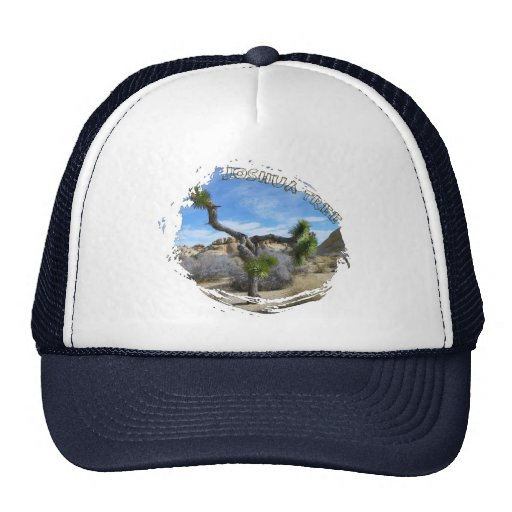 Beautiful Joshua Tree Hat!