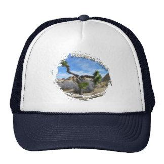 Beautiful Joshua Tree Hat!