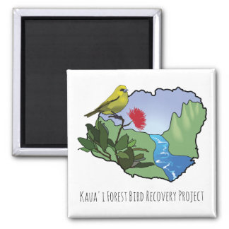 Beautiful Kauai Forest Bird Magnet! Square Magnet