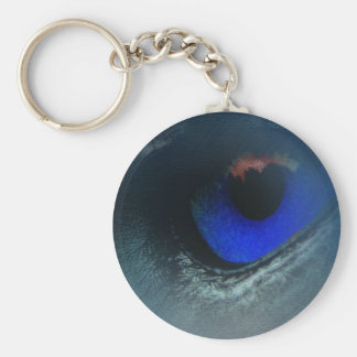 Beautiful keychain (Blue eye)
