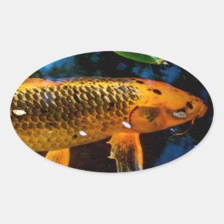 Beautiful Koi Oval Sticker