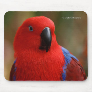 """Beautiful """"Lady in Red"""" Eclectus Parrot Mouse Mat"""