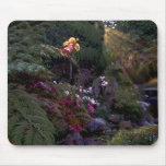 Beautiful landscape mousepad