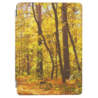 Beautiful Landscape - Road In Autumn Forest iPad Air Cover