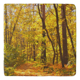 Beautiful Landscape - Road In Autumn Forest Trivet