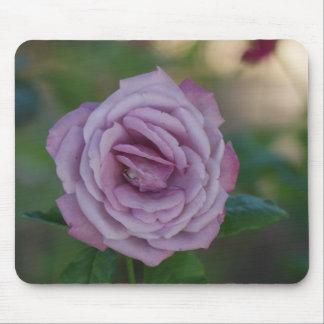 Beautiful Lavender Rose Mouse Pad